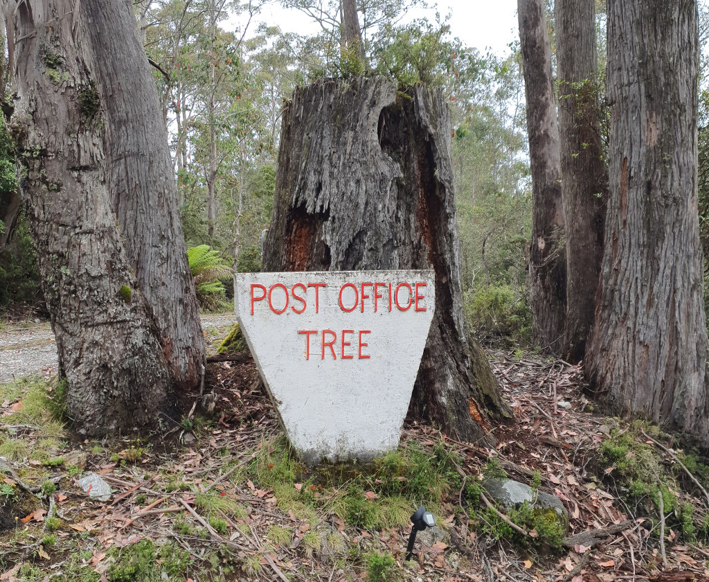 Post Office Tree